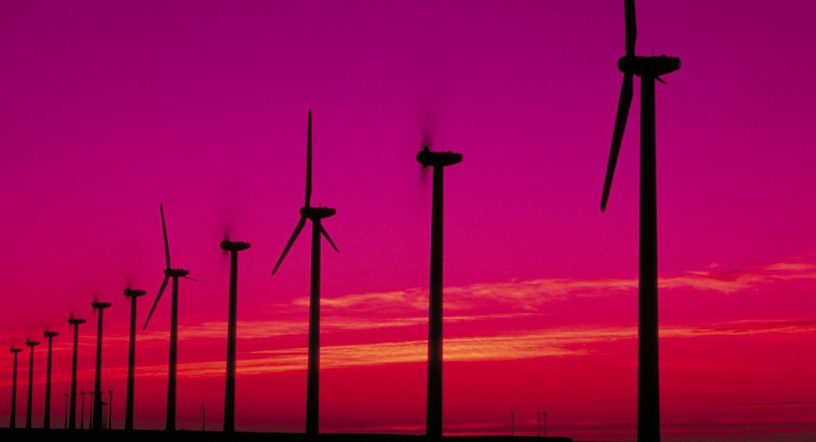 cena-prądu-cena-1-kWh-energia-dla-firm-opinie-licznik-energii-elektrycznej